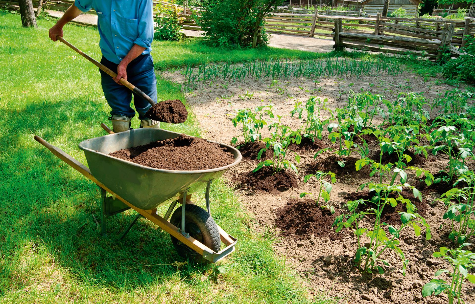 Que peut on composter comment utiliser mon composteur - Que peut on mettre dans un composteur de jardin ...